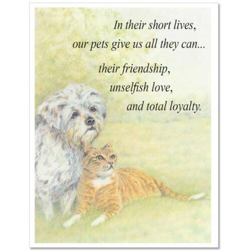 S10 Pet Sympathy Card