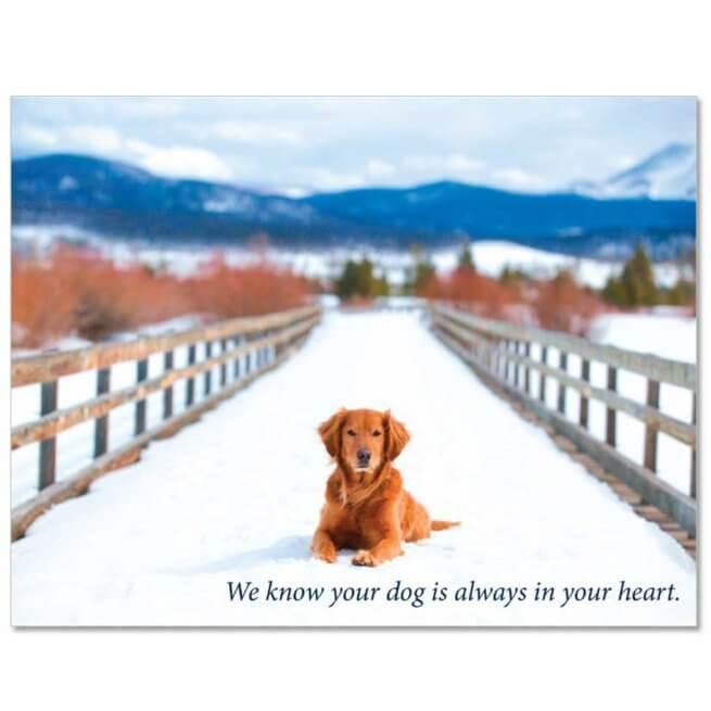 S205 Pet Sympathy Card