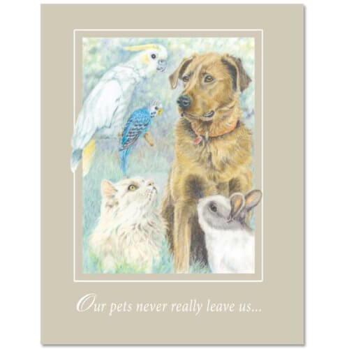 S31 Pet Sympathy Card