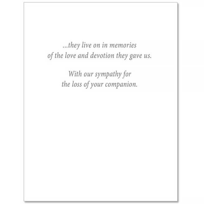 S44 Pet Sympathy Card
