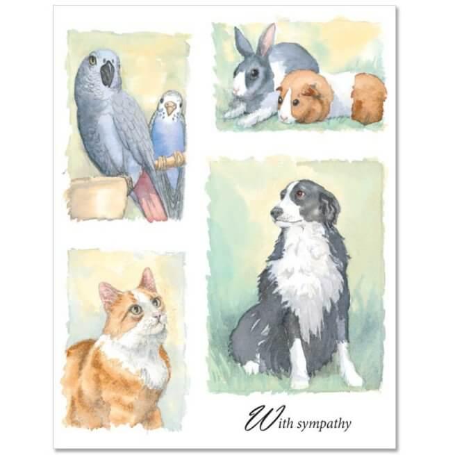 S52 Pet Sympathy Card