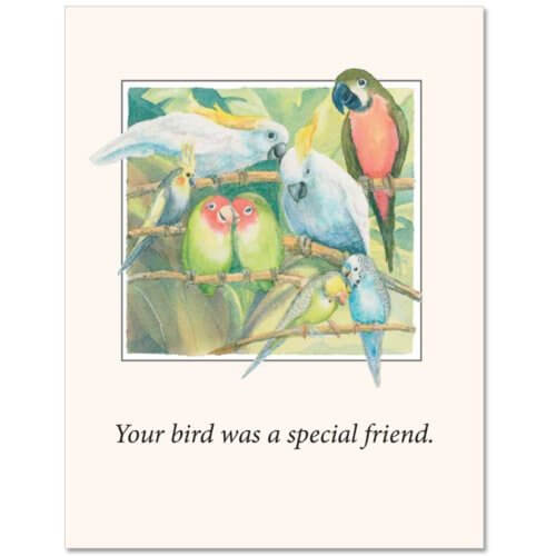 S72 Pet Sympathy Card