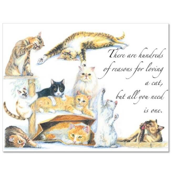 S74 Pet Sympathy Card