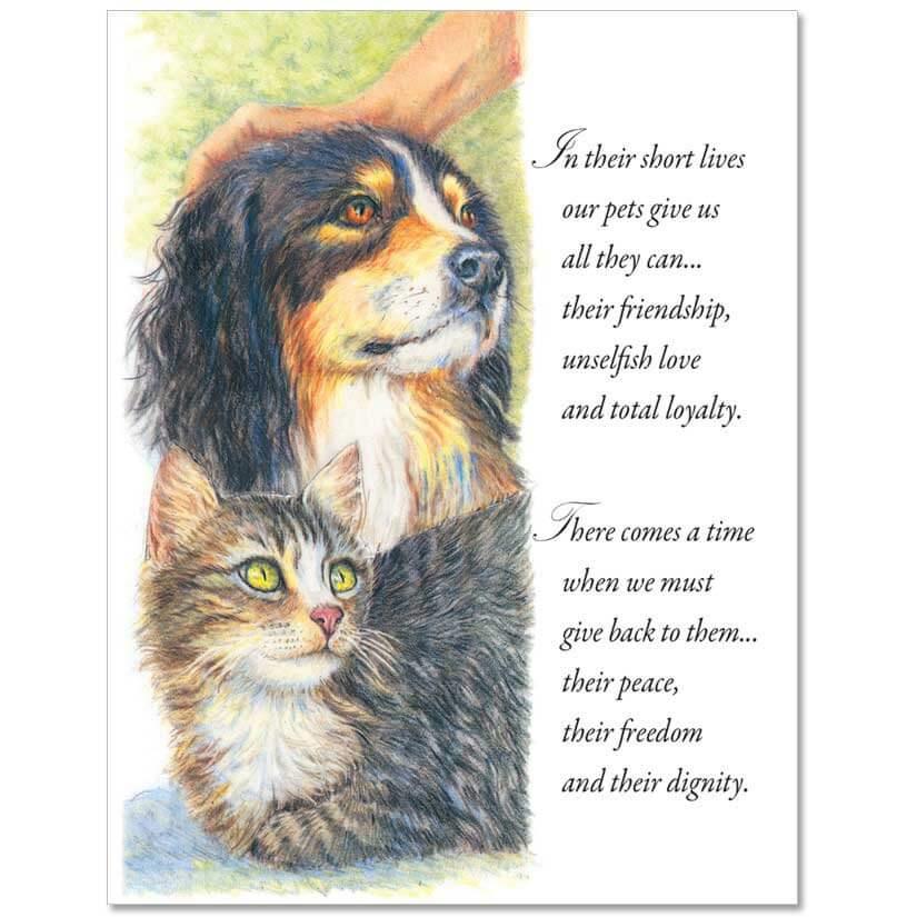 S81 Pet Sympathy Card