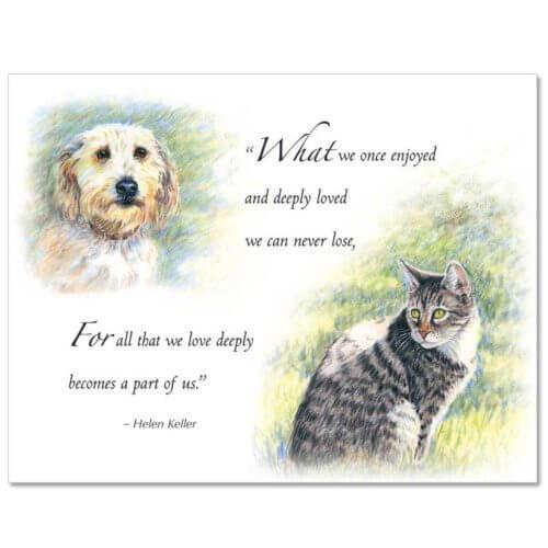 S82 Pet Sympathy Card