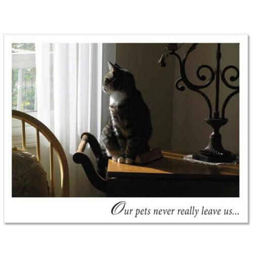 S85 Pet Sympathy Card