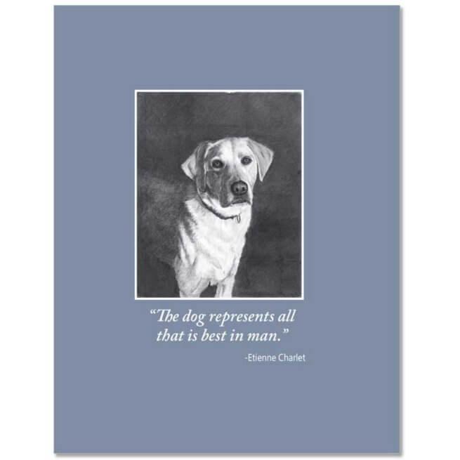 S87 Pet Sympathy Card