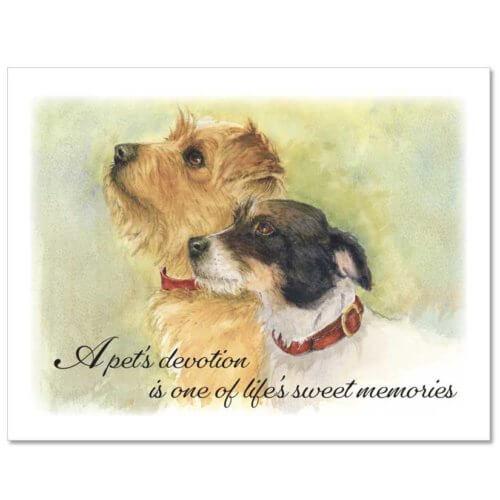 S94 Pet Sympathy Card