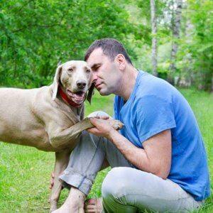 Pet Cancer Decisions